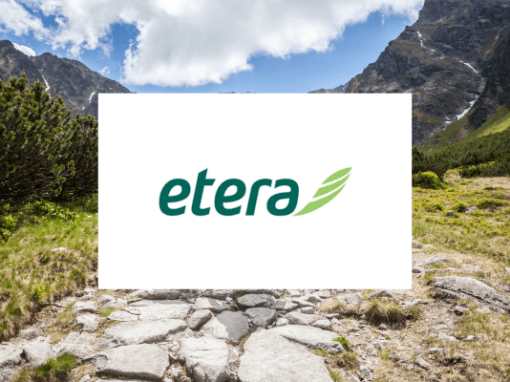 Assessment Case Story: Etera IT development agilification